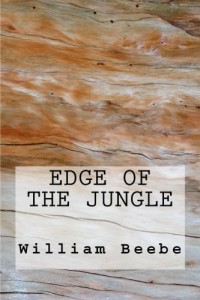 Edge of the Jungle