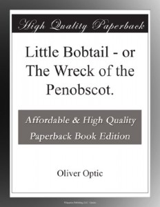 Little Bobtail – or The Wreck of the Penobscot.