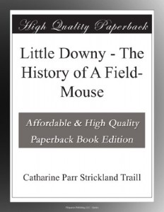 Little Downy – The History of A Field-Mouse