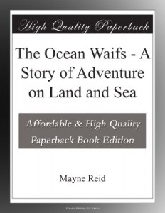 The Ocean Waifs – A Story of Adventure on Land and Sea