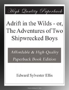 Adrift in the Wilds – or, The Adventures of Two Shipwrecked Boys