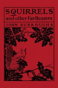 Squirrels and Other Fur-bearers (Yesterday's Classics)