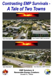Contrast EMP Survivals – A Tale of Two Towns: This novel contrasts a cataclysmic Electromagnetic Pulse burst over two towns. Cantville, was EMP … (5 Vol. EMP Protetio Series) (Volume 2)