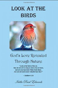 Look at the Birds – God's Love Revealed Through Nature