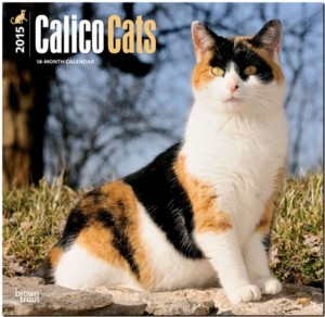 Calico Cats 2015 Square 12×12 (Multilingual Edition)