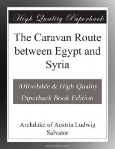 The Caravan Route between Egypt and Syria